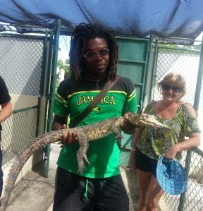 Hold a Wild Crocodile