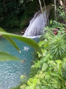 Blue Hole Mineral Falls, Jamaica